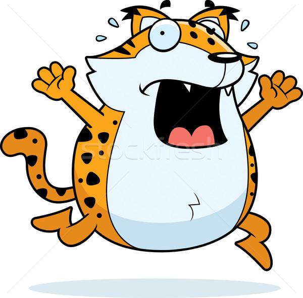 Cartoon Bobcat Panic Stock photo © cthoman
