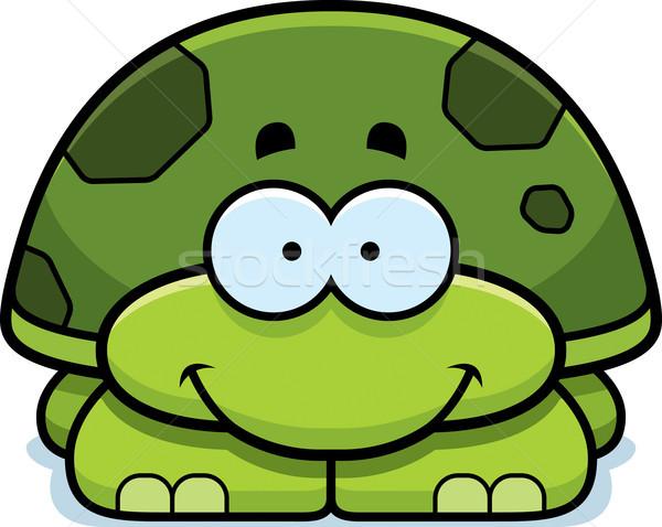 Glimlachend weinig schildpad cartoon illustratie gelukkig Stockfoto © cthoman