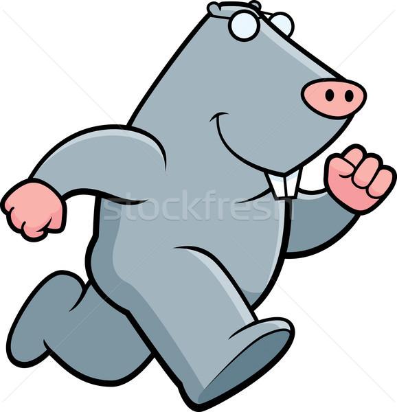 Mole Running Stock photo © cthoman