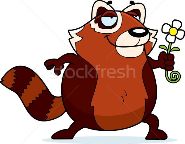 Cartoon czerwony panda kwiat ilustracja Zdjęcia stock © cthoman