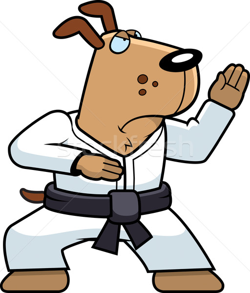 Karate Dog Stock photo © cthoman