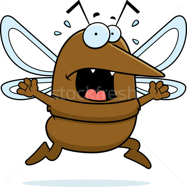 Mosquito Panic Stock photo © cthoman