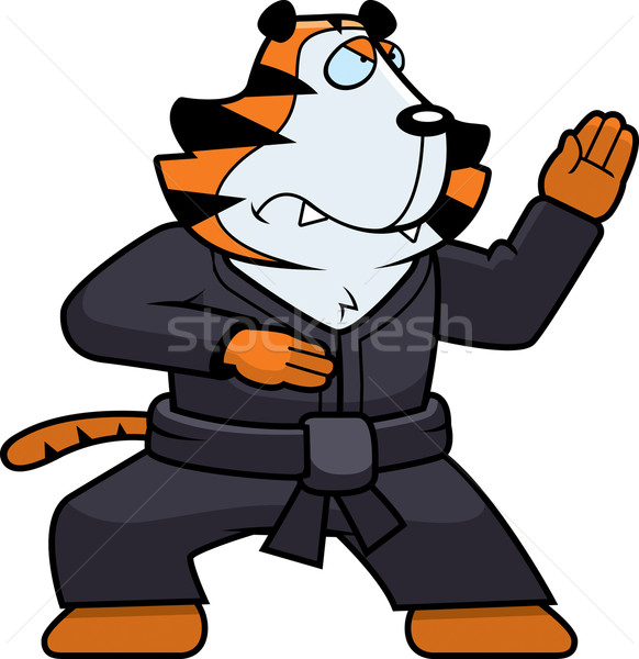 Karate tigris rajz macska állat Stock fotó © cthoman