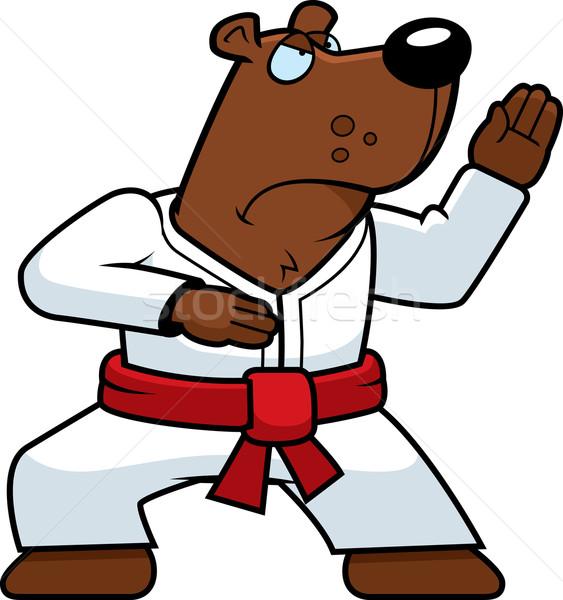Karate Bear Stock photo © cthoman