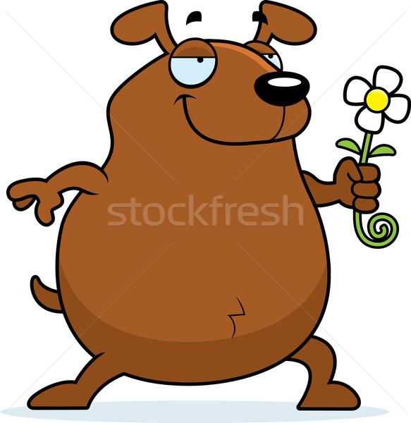 Dog Flower Stock photo © cthoman