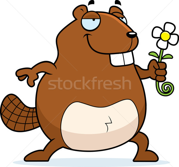 бобр цветок счастливым Cartoon Сток-фото © cthoman