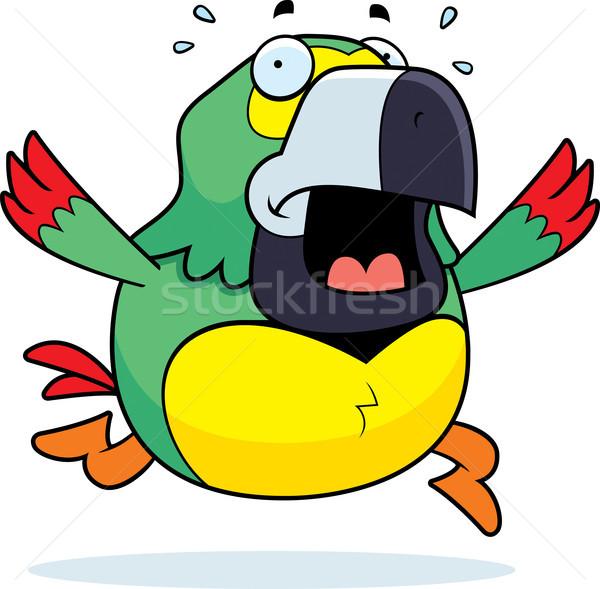 Rajz papagáj pánik fut trópusi állat Stock fotó © cthoman