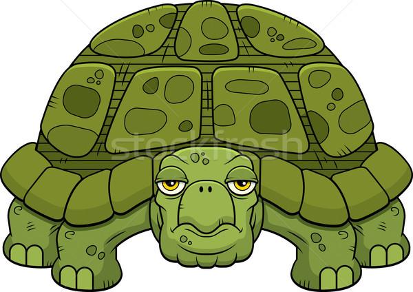 Cartoon tartaruga verde piedi guardando animale Foto d'archivio © cthoman