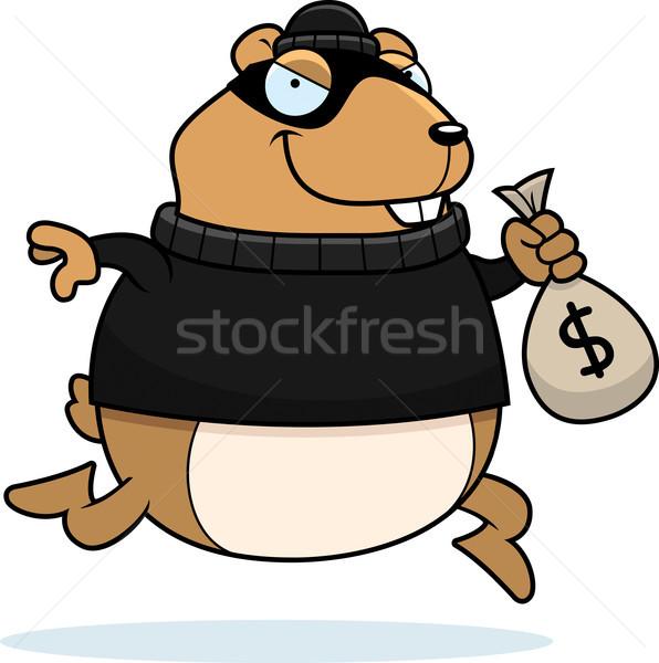 Cartoon chomika włamywacz ilustracja ceny Zdjęcia stock © cthoman