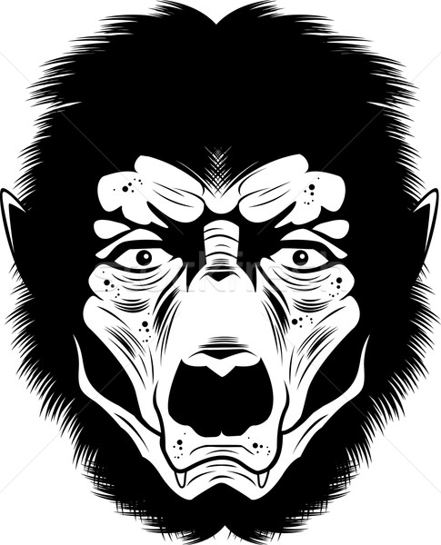 Werewolf Face Stock photo © cthoman