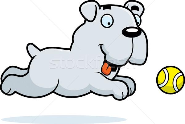 Cartoon Bulldog Chasing Ball Stock photo © cthoman