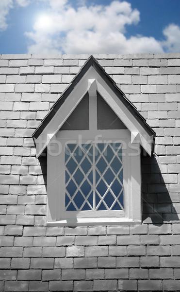 Window on house Stock photo © curaphotography