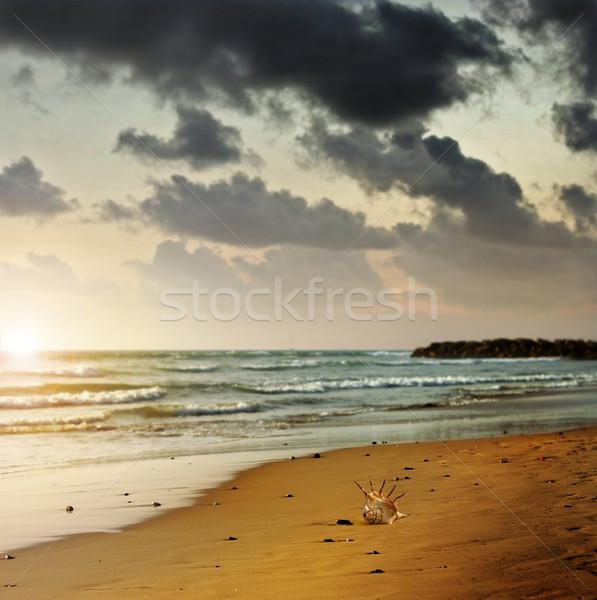 Humeurig strand landschap foto eenzaam Stockfoto © curaphotography
