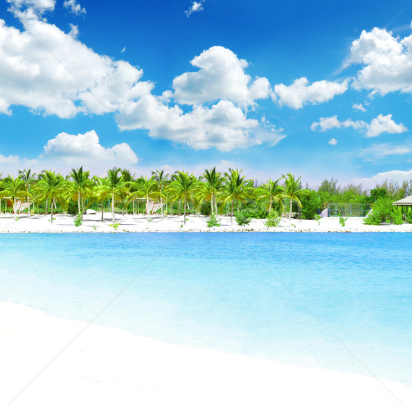 Stock photo: Tropical getaway