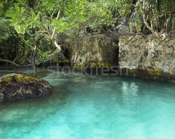 Lagoon Stock photo © curaphotography
