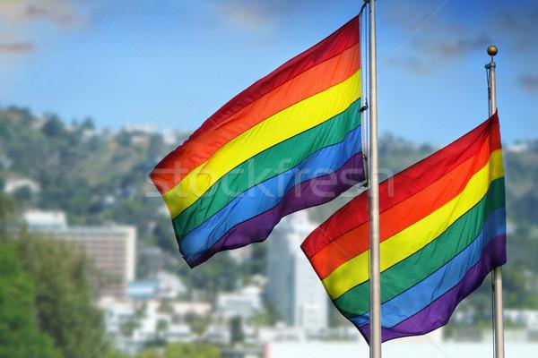 Rainbow bandiere coppia vento città Foto d'archivio © curaphotography