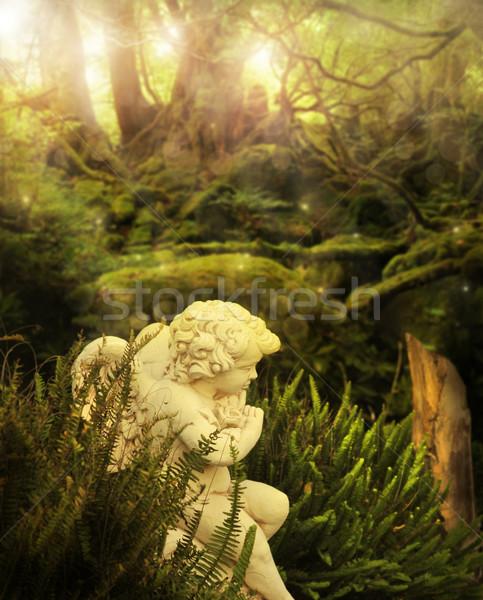 Engel tuin klassiek cherubijn mystiek stralen Stockfoto © curaphotography