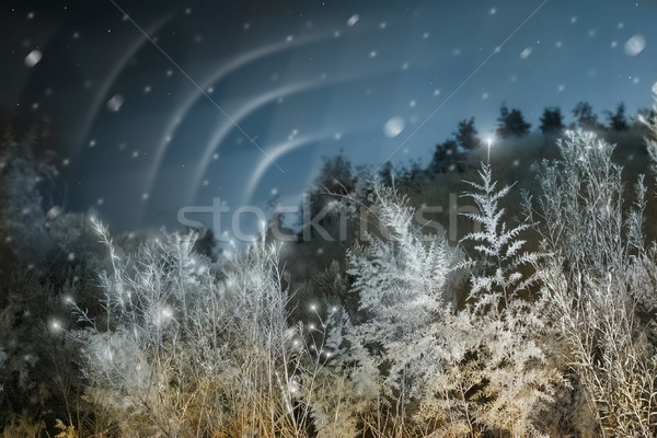 északi fények karácsony manipulált téli tájkép aurora Stock fotó © curaphotography