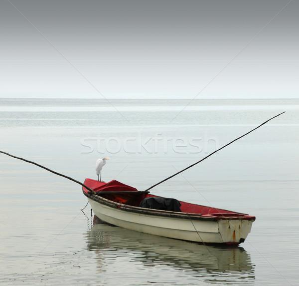 Eenzaam rij boot roeiboot humeurig Stockfoto © curaphotography