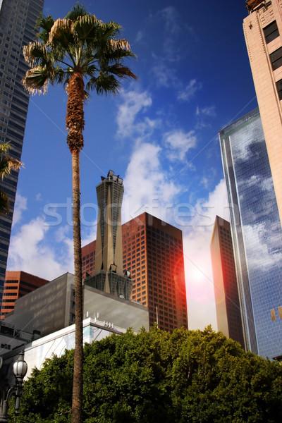 Zakenwijk stadsgezicht Los Angeles centrum boom glas Stockfoto © curaphotography