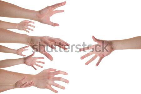 Handen helpende hand verscheidene kaukasisch hand lichaam Stockfoto © Cursedsenses