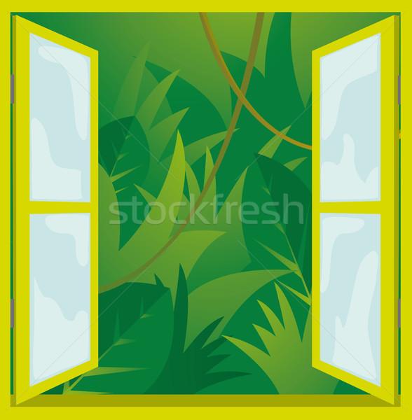 ウィンドウ 自然 ジャングル ガラス 緑 工場 ストックフォト © curvabezier