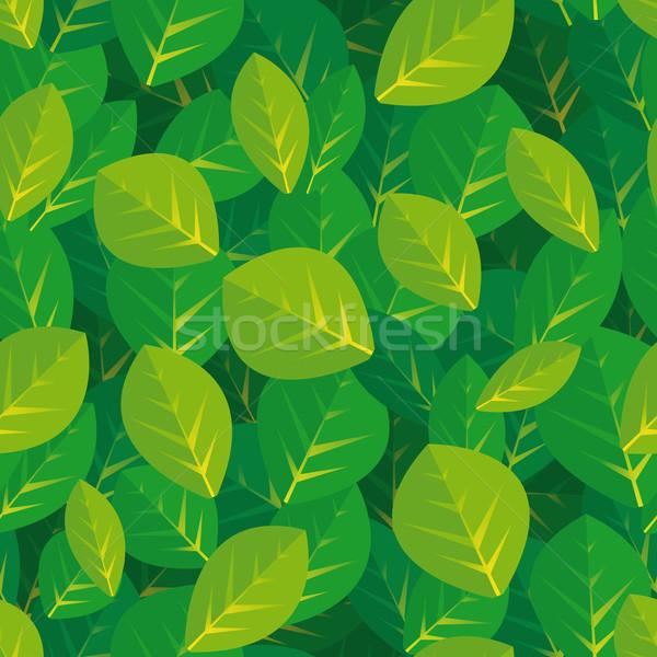 Folhas natureza folha verde Foto stock © curvabezier