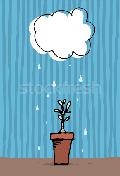 Plant growing in the rain / Growth Stock photo © curvabezier