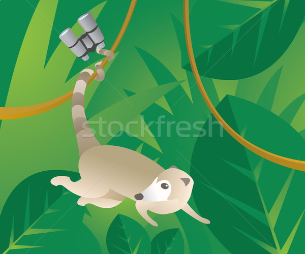 Pequeno binóculo natureza animal mata aventura Foto stock © curvabezier