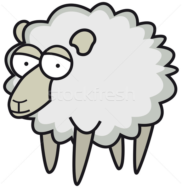 Fluffy sheep Stock photo © curvabezier