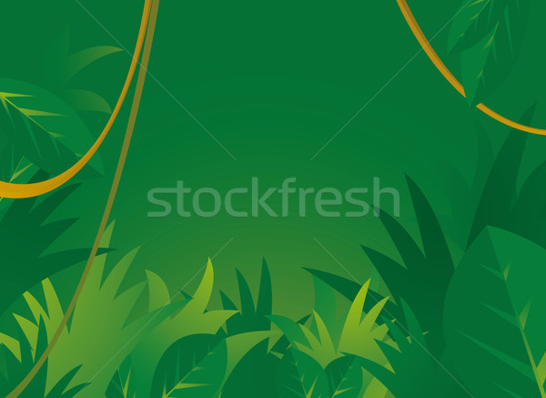 Stock photo: Jungle background with copyspace