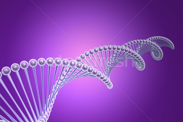 model of twisted DNA chain  Stock photo © cuteimage