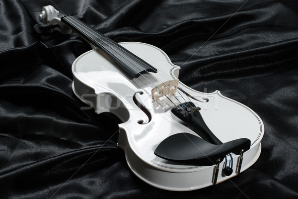 Photograph of a white violin Stock photo © cwzahner