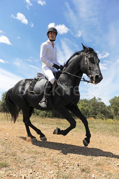 Jonge man paard zwarte hengst veld man Stockfoto © cynoclub