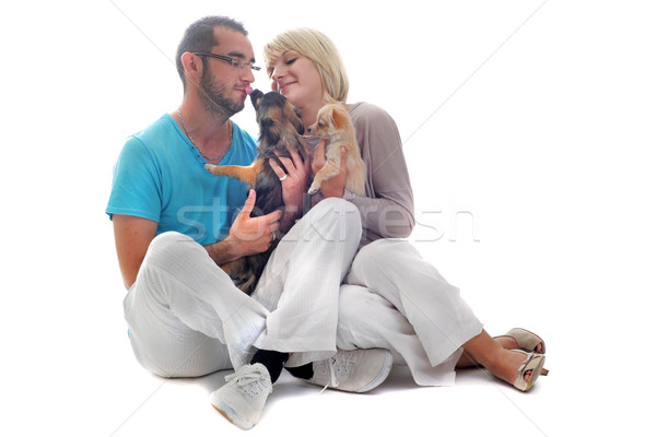 couple and chihuahua Stock photo © cynoclub