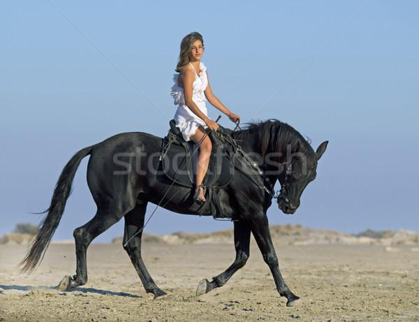 horseteen on the beach Stock photo © cynoclub