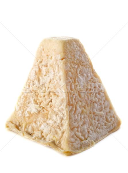 Сыр из козьего молока святой сыра студию Франция Сток-фото © cynoclub