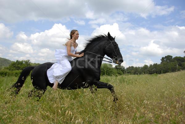 Equitación boda mujer hermosa negro semental Foto stock © cynoclub