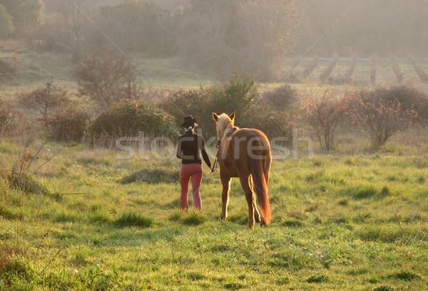 Dziewczyna konia młoda kobieta brązowy ogier dziedzinie Zdjęcia stock © cynoclub