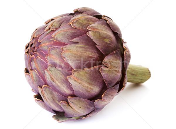 purple artichoke in studio Stock photo © cynoclub