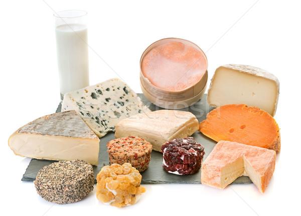 cheeses in studio Stock photo © cynoclub