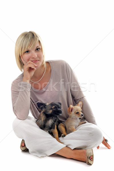 girl and chihuahuas Stock photo © cynoclub