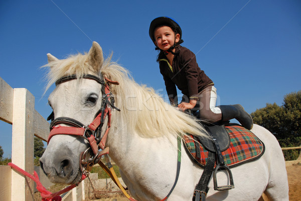Stock photo: little girl and shetland