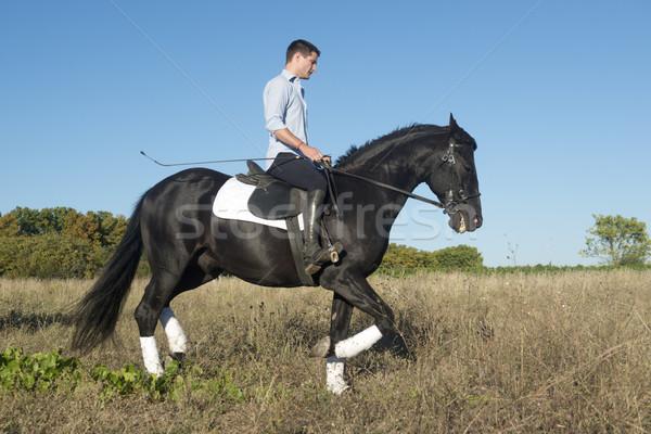 horseback riding Stock photo © cynoclub