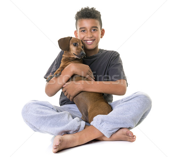 Bassê menino velho branco feliz criança Foto stock © cynoclub