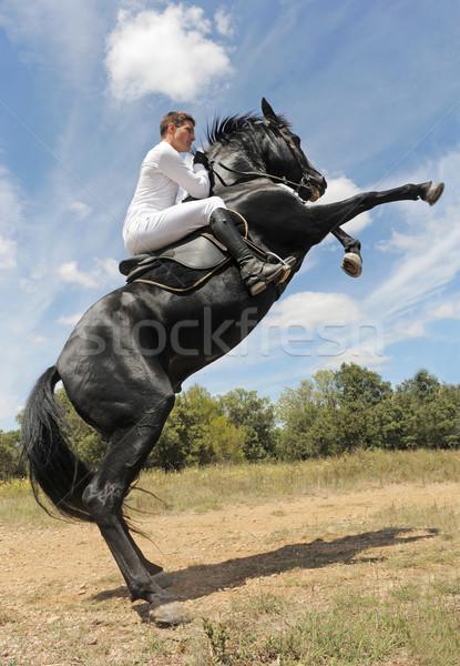 Konia młody człowiek piękna czarny ogier człowiek Zdjęcia stock © cynoclub