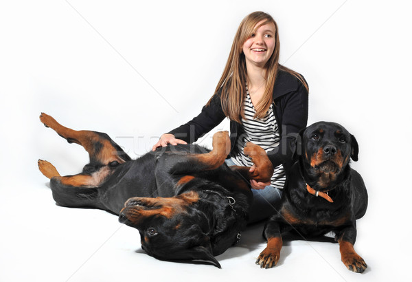 teen and rottweilers Stock photo © cynoclub