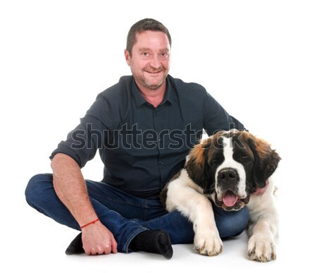 two cocker spaniel and man Stock photo © cynoclub
