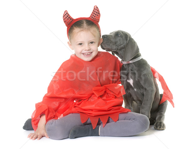 puppy great dane and child Stock photo © cynoclub