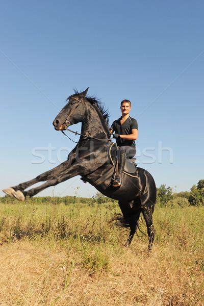 Konia młody człowiek piękna czarny ogier niebo Zdjęcia stock © cynoclub